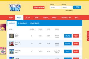 bingo hero website screenshot