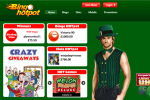 Bingo Hotpot website homepage