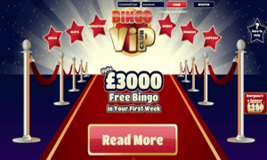 Bingo VIP Club website homepage