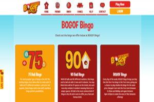 bogof bingo homepage screenshot