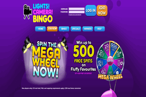 Lights Camera Bingo website homepage