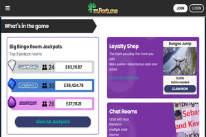 mfortune bingo homepage screenshot