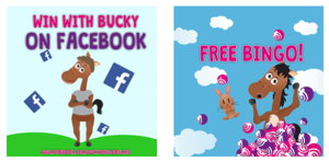 Bucky Bingo promotional page screenshot