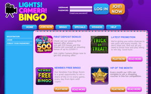 Lights Camera Bingo promotional page screenshot