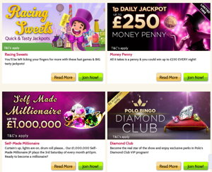 Polo Bingo promotional page screenshot