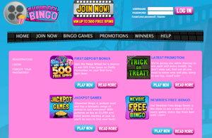Showreel Bingo promotional page screenshot
