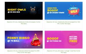 Buttercup Bingo promotional page screenshot