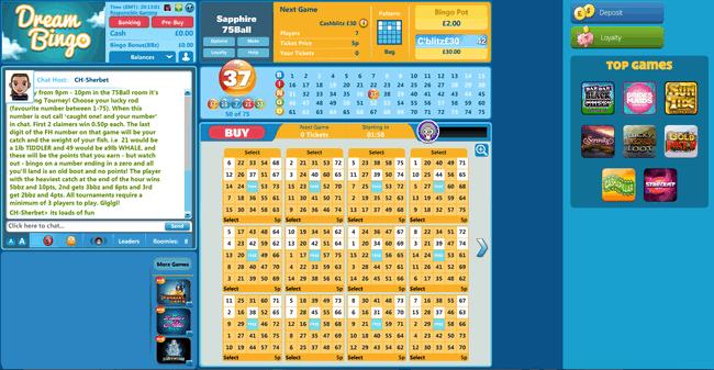 Dream Bingo 75 ball example