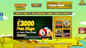 Snappy Bingo website homepage
