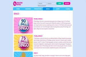 spectra bingo website screenshot