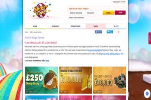 suagr bingo website screenshot