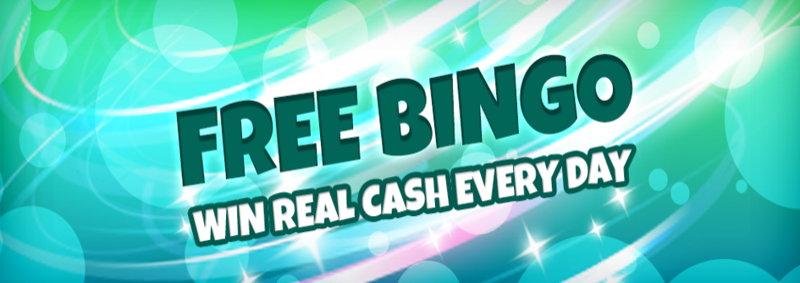 zingo bingo promo screenshot