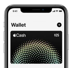 apple pay wallet screenshot