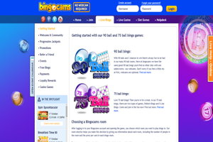 bingocams website homepage screenshot