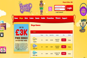 bingo crazy website screenshot