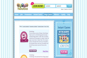 bingo fabulous website screenshot