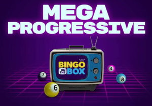bingo on the box promo screenshot