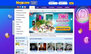 bingocams website screenshot