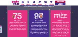 bicky bingo promo screenshot