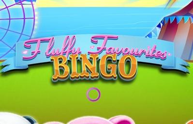 Fluffy Favourites Bingo Logo