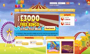 Fun Bingo Screenshot