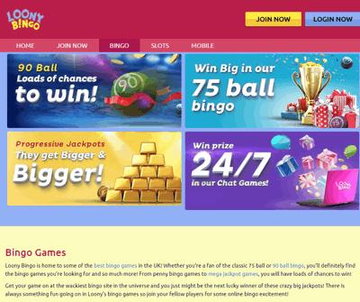 loony bingo screenshot