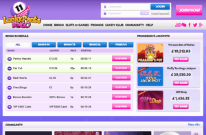 Lucky Pants Bingo homepage screenshot