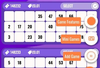 Mobile Bingo Features