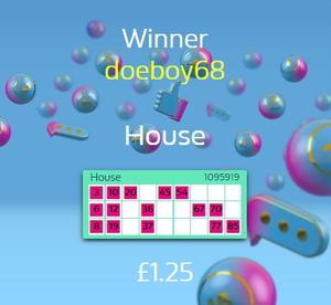 Online Bingo Winner