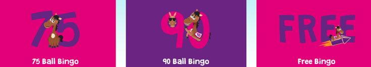 Bucky Bingo variants screenshot