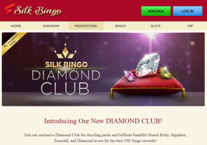 Silk Bingo promotional page screenshot