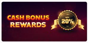 Wow Bingo promotional offer screenshot